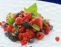 Zeelandia Lesní ovoce - náplň Frutafil 1 kg
