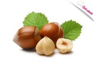 Zeelandia Zeesan lískový ořech 0,5 kg - ztužovač šlehačky s příchutí lískového ořechu