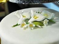Kingcakes Bílá potahovací hmota - rolovaný fondán Sugar Paste White 250g